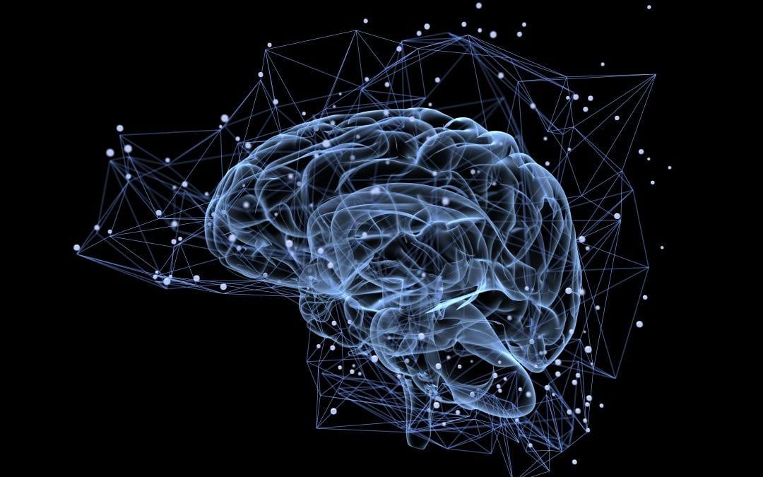 Mentors Facilitate Memory Bubbles