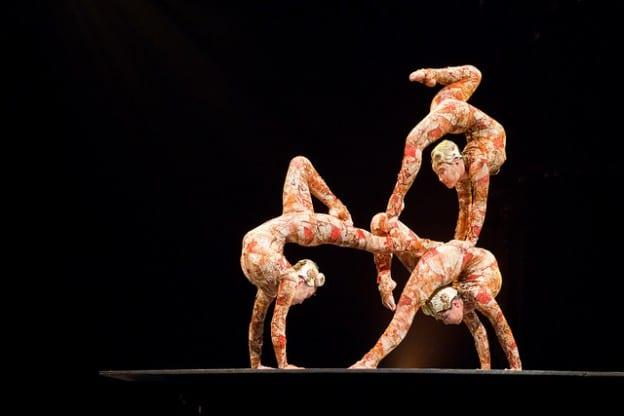 Cirque du Service
