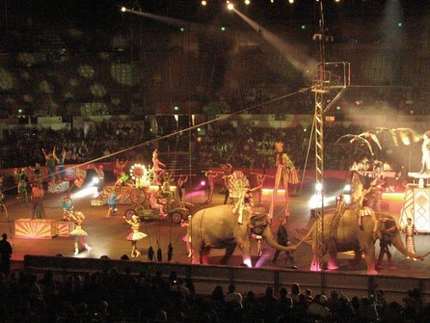 The Circus Principle