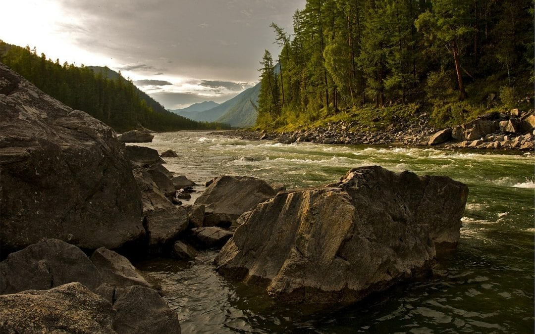 A River Runs Through Service